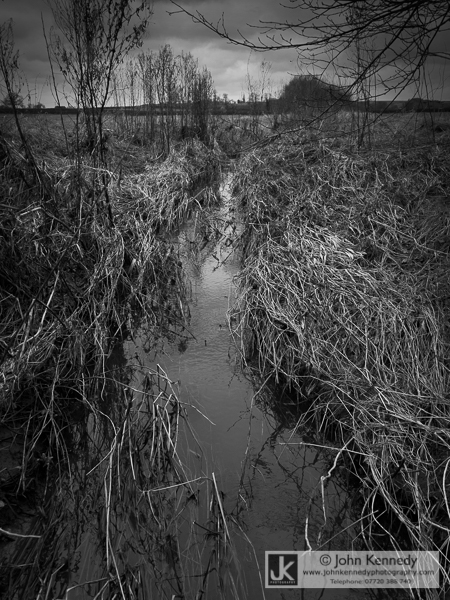 A babbling stream, Leicestershire UK